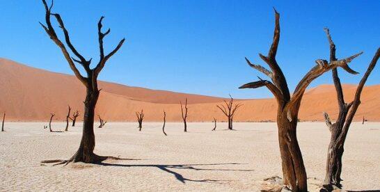 Namibia i jej skarby
